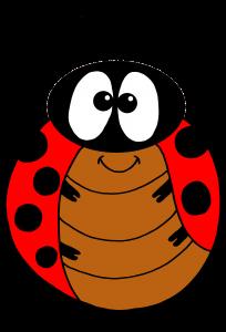 ladybeetle 3